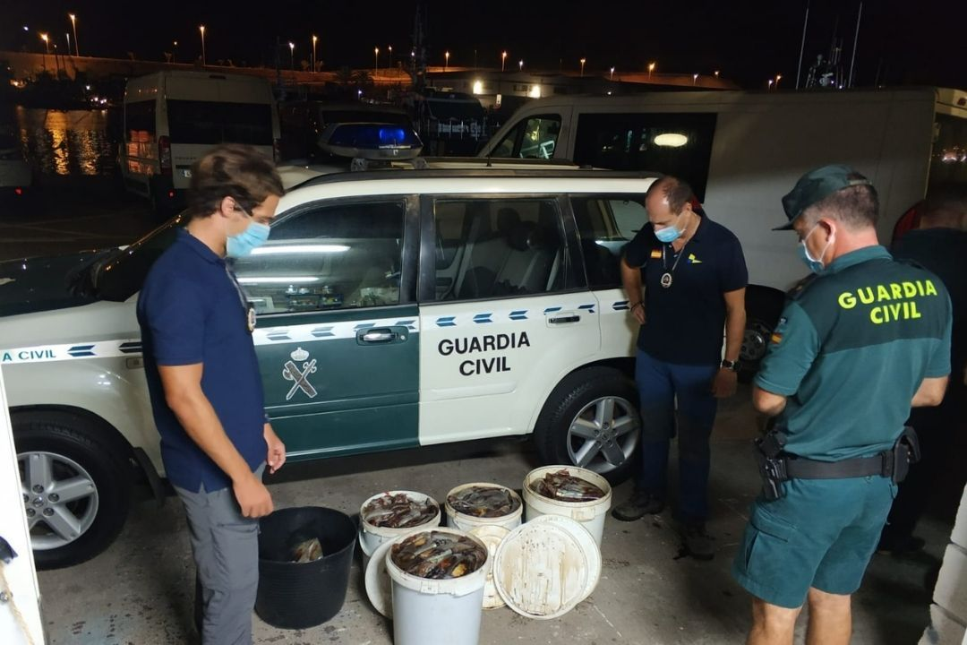 Guardia Civil pesca ilegal