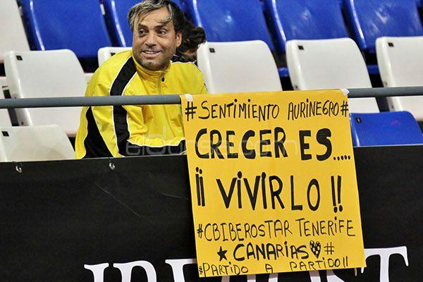 Afición CB Canarias, Liga endesa