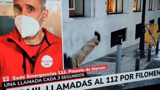Caída de un canario en Madrid