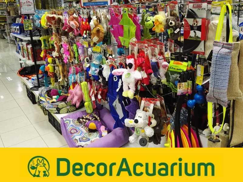 Decoracuarium/ Imagen: CEDIDA